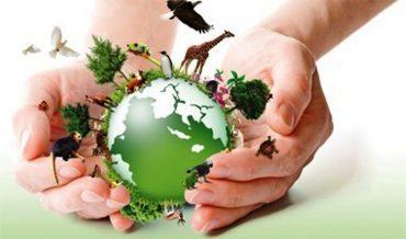 Ficha de Trabalho – O Planeta da Vida (3) – Soluções