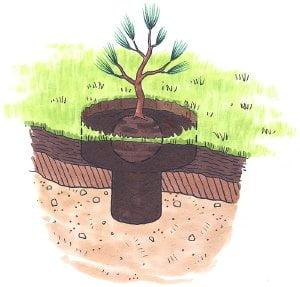 Formação do solo