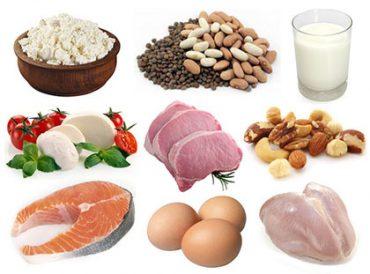 Ficha de Trabalho – Reacção do organismo ao excesso ou à carência de alimento (1) – Soluções