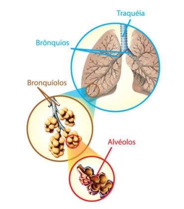 Teste Diagnóstico – Circulação do ar (2)