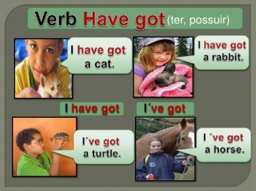 Ficha de Trabalho – Verb Have Got (2) – Soluções