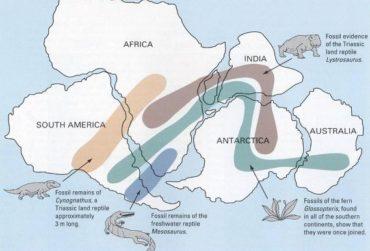 Ficha de Trabalho – Deriva dos Continentes e Tectónica de Placas (3) – Soluções