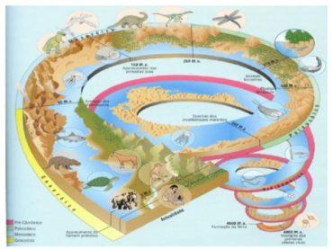 Ficha de Trabalho – Grandes etapas na História da Terra (1) – Soluções