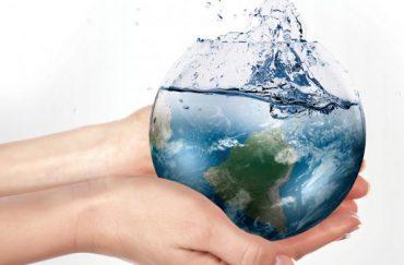Teste Diagnóstico – Importância da água para os seres vivos (3) – Soluções