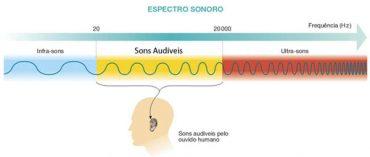 Ficha de Trabalho – Deteção do som e espetro sonoro (2)