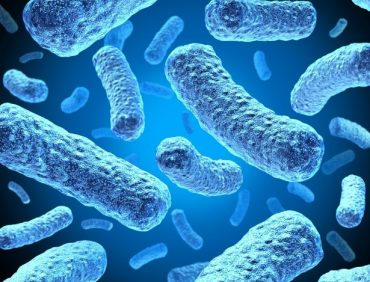 Teste Diagnóstico – Micróbios (1)