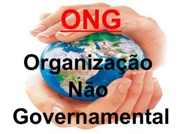 Ficha de Trabalho – Organizações não governamentais (1)