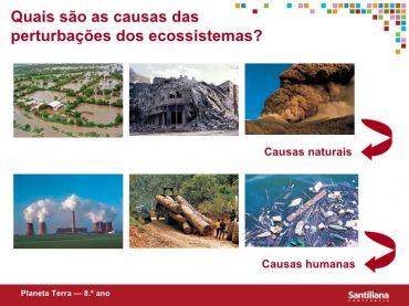 Teste Diagnóstico – Perturbações no equilíbrio dos ecossistemas (1) – Soluções